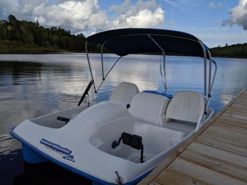 Electric Paddleboat